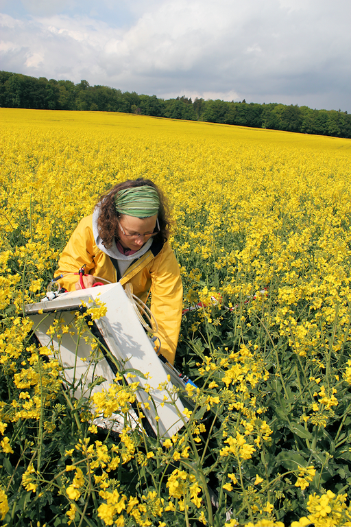 Measurements of greenhouse gas emissions with a static soil chamber in a blooming rape seed field, Reiffenhausen