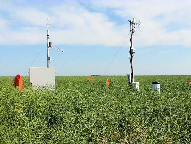 Measurement of CO2 and nitrous oxide fluxes from a rape field in Dedelow with the eddy covariance technique
