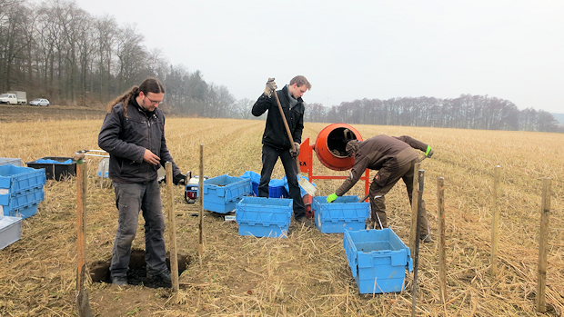 Application of biochar-soil mixtures to the experimental plots