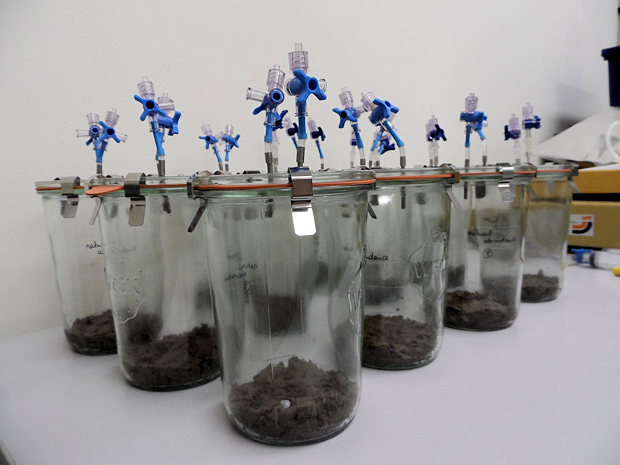 Anaerobic soil incubation using growth inhibitors to investigate fungal N2O production.